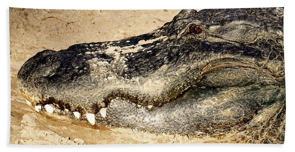 Alligator Hand Towel featuring the photograph The Great Alligator by David Lee Thompson