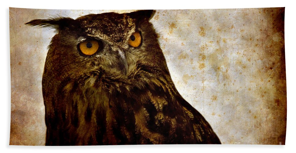 Great Owl Bath Sheet featuring the photograph The Great Owl by Angel Ciesniarska