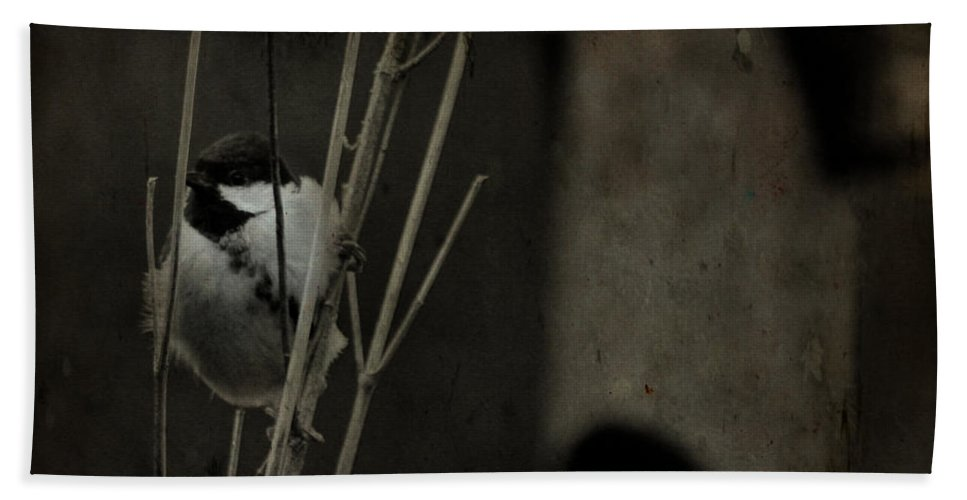 Tit Bath Towel featuring the photograph The Great Tit by Angel Ciesniarska