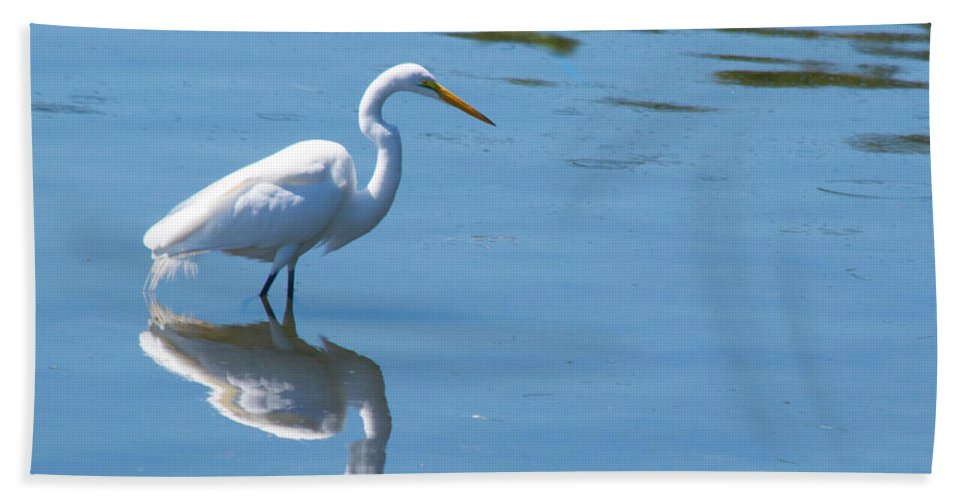 susan Molnar Hand Towel featuring the photograph The Great White Fisherman by Susan Molnar