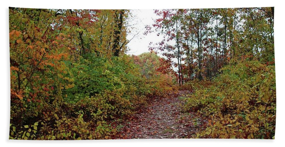 Fall Hand Towel featuring the photograph The Heart Of A Gypsy by Michiale Schneider