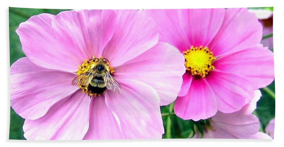Bee Bath Towel featuring the photograph The Honeymaker by Will Borden
