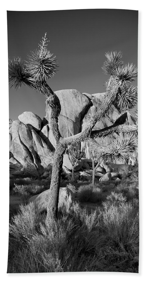 California Bath Sheet featuring the photograph The Joshua Tree by Peter Tellone