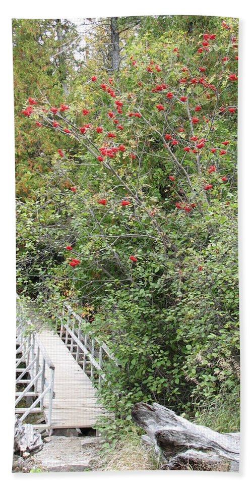 Bridge Bath Sheet featuring the photograph The Journey by Kelly Mezzapelle