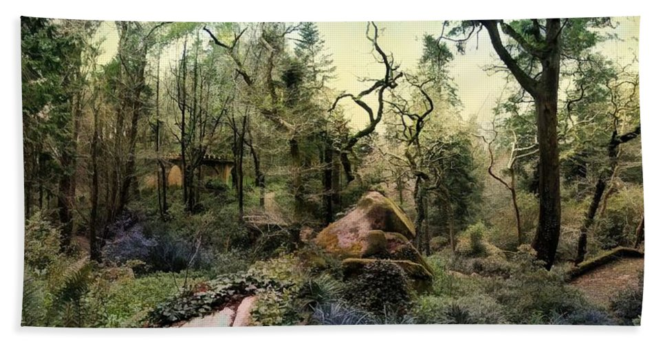 The King's Forest Hand Towel featuring the photograph The King's Forest by Daniel Arrhakis