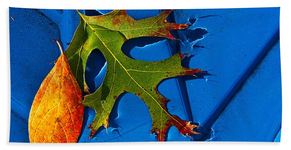 Leaf Hand Towel featuring the photograph The Last Dance by Christopher Holmes