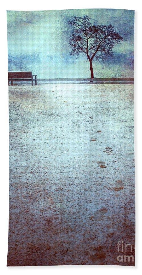 Bench Bath Sheet featuring the photograph The Last Snowfall by Tara Turner