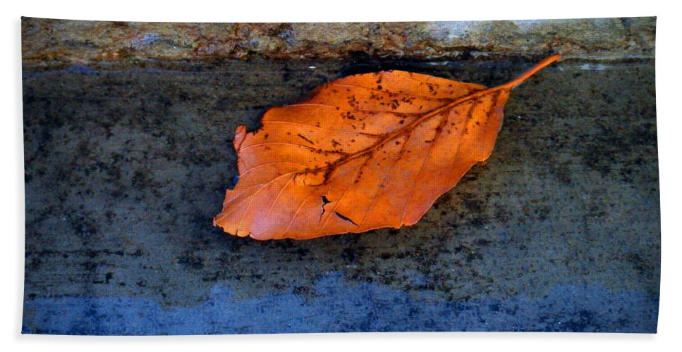 Leaf Hand Towel featuring the photograph The Leaf On The Stairs by Tara Turner