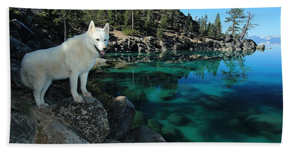 Lake Tahoe Hand Towel featuring the photograph The Light Of Lake Tahoe by Sean Sarsfield