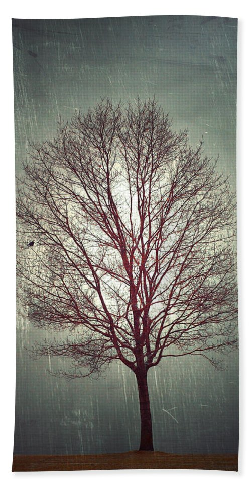 Tree Hand Towel featuring the photograph The Light Within by Tara Turner