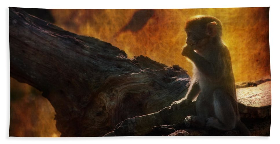 Monkey Hand Towel featuring the photograph The Little Golumn by Angel Ciesniarska