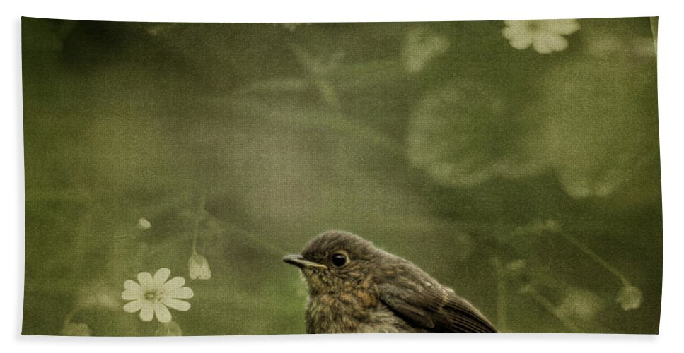 Robin Hand Towel featuring the photograph The Little Robin by Angel Ciesniarska