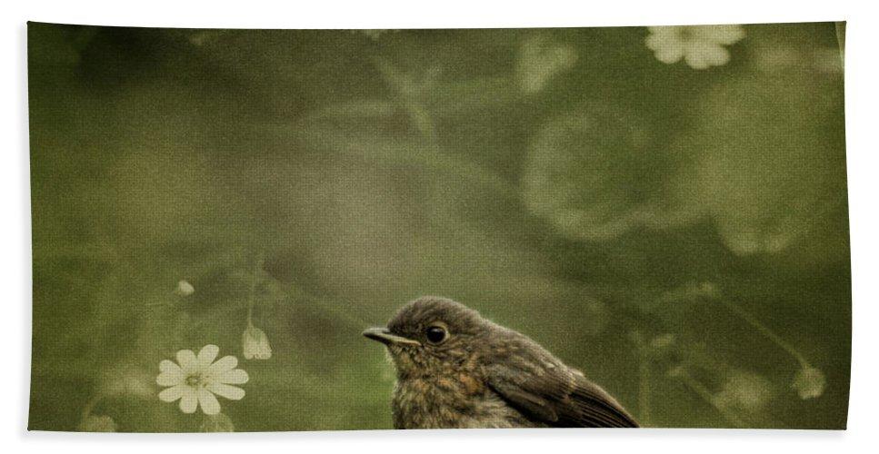 Robin Bath Sheet featuring the photograph The Little Robin by Angel Ciesniarska