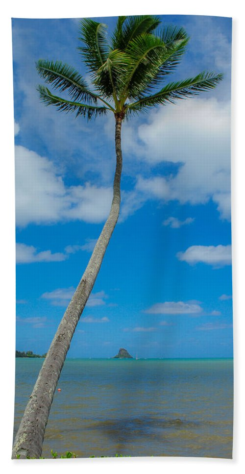 Palm Tree Hand Towel featuring the photograph The Lone Palm by Megan Martens