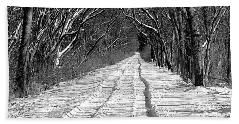Bath Sheet featuring the photograph The Long Winter Walk by Jenny Gandert
