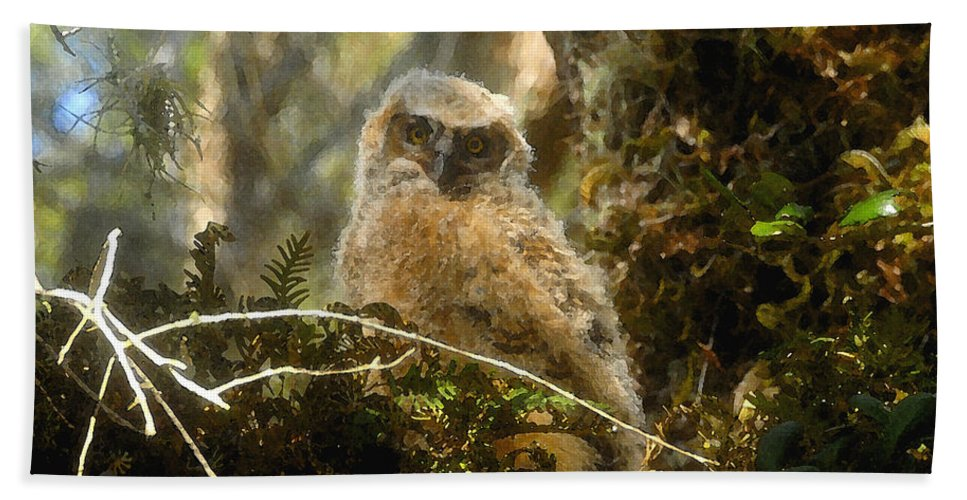 Baby Owl Hand Towel featuring the painting The Look Of Innocence by David Lee Thompson