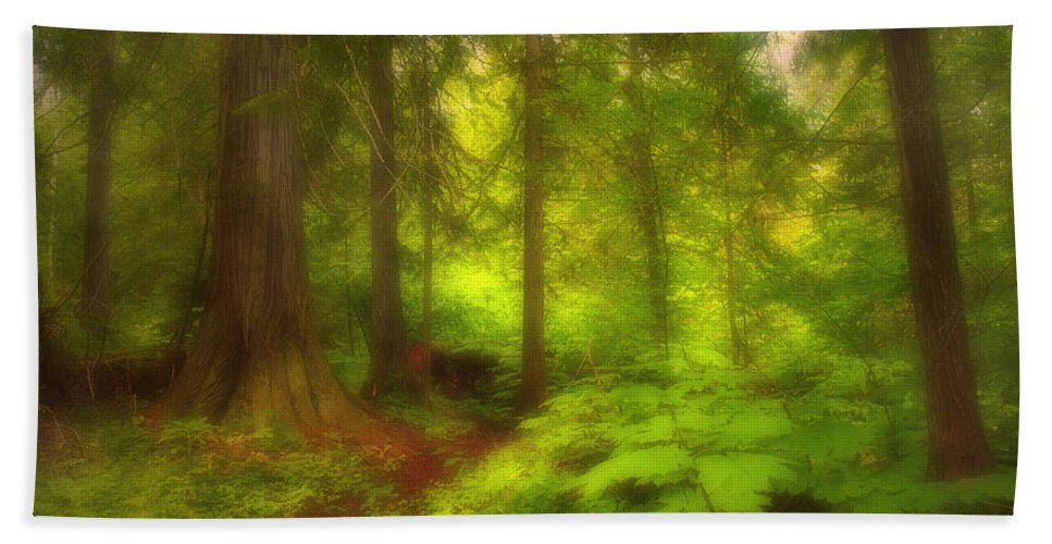 Forest Hand Towel featuring the photograph The Magic Forest by Tara Turner