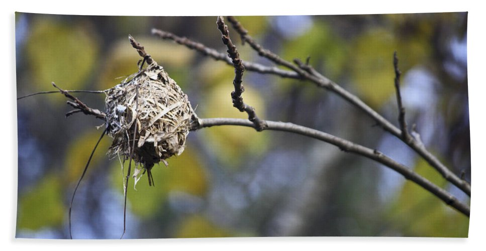 Nest Hand Towel featuring the photograph The Nest 2 by Teresa Mucha