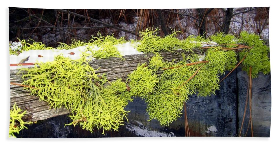 Moss Hand Towel featuring the photograph The Old Mossy Flume by Will Borden