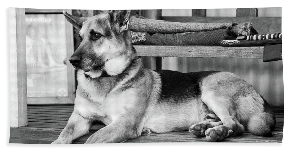 German Shepherd Dog Hand Towel featuring the photograph The Old Watch Dog by Tracey Beer