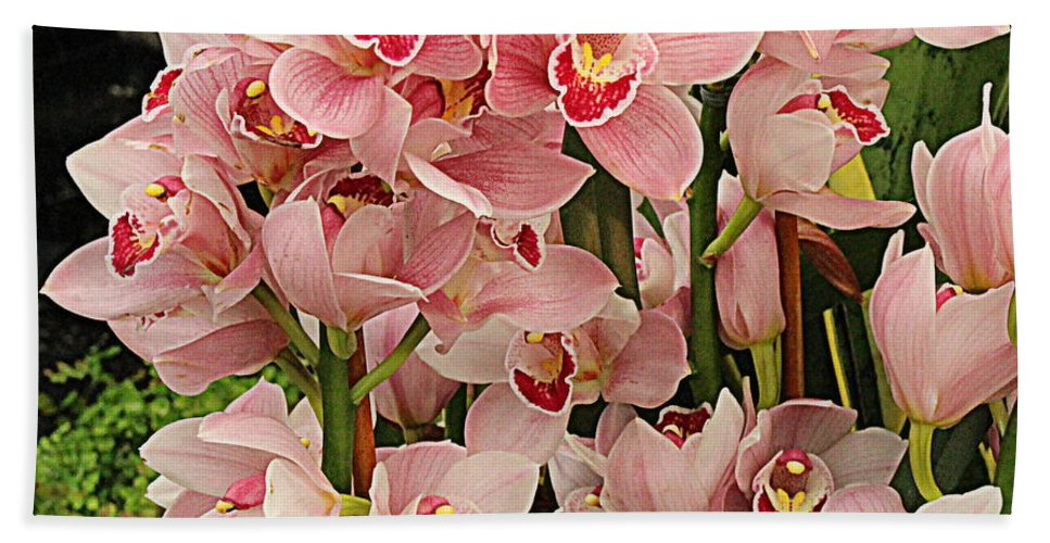 Orchid Hand Towel featuring the photograph The Orchid Garden by Dora Sofia Caputo Photographic Design and Fine Art