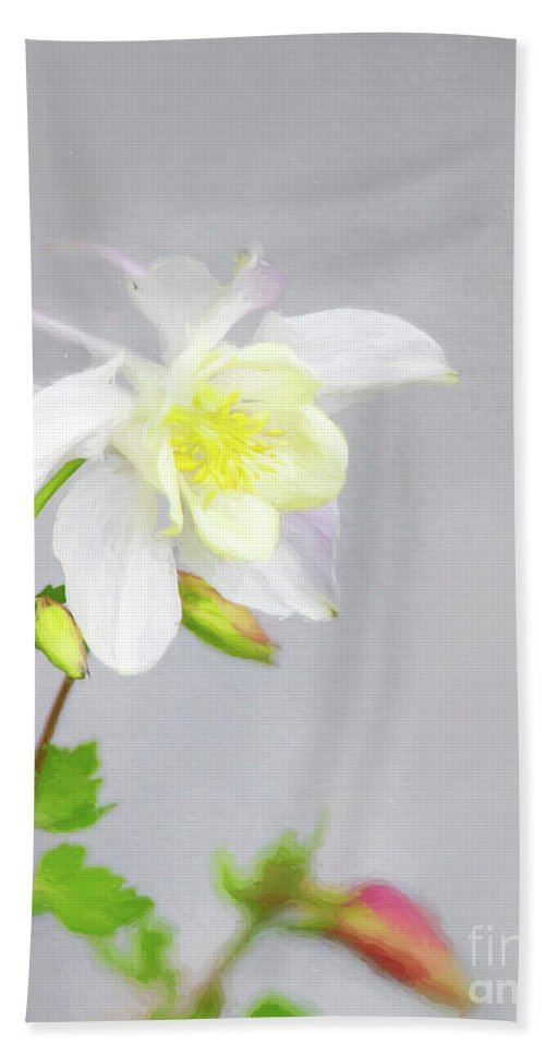 Columbine Bath Sheet featuring the photograph The Painted Columbine by Carolyn Fox