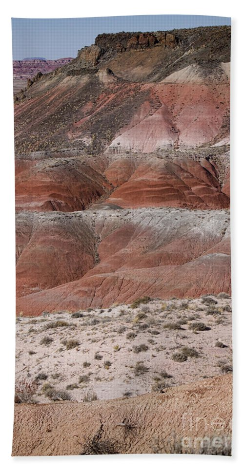 Arizona Bath Sheet featuring the photograph The Painted Desert 8020 by James BO Insogna