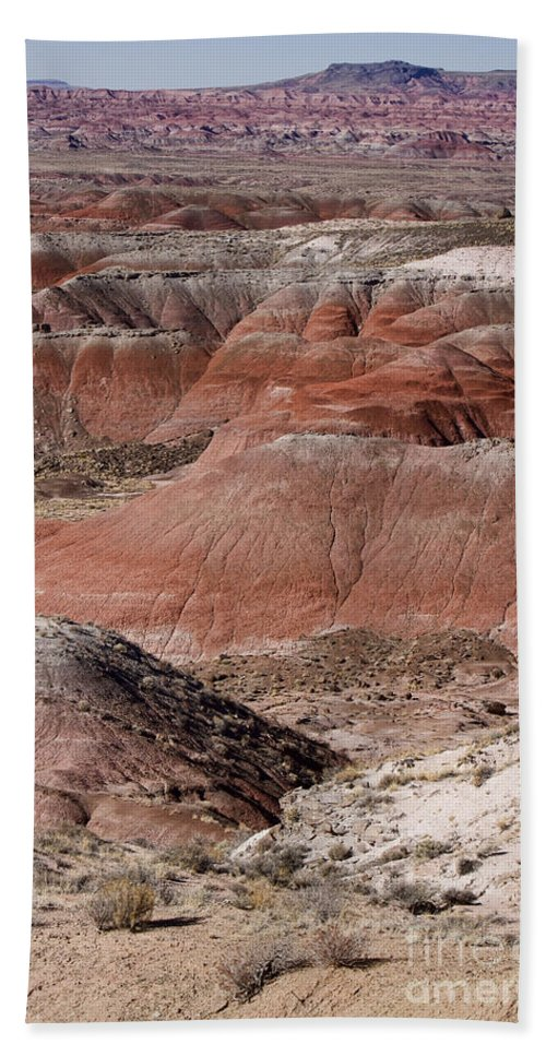 Arizona Bath Sheet featuring the photograph The Painted Desert 8024 by James BO Insogna