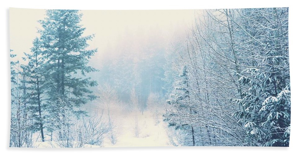 Winter Hand Towel featuring the photograph The Pale Kiss Of Winter by Tara Turner