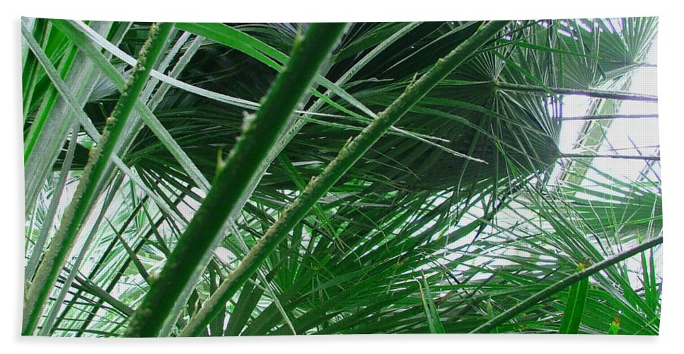 Palm Tree Hand Towel featuring the photograph The Palm House Kew England by Heather Lennox