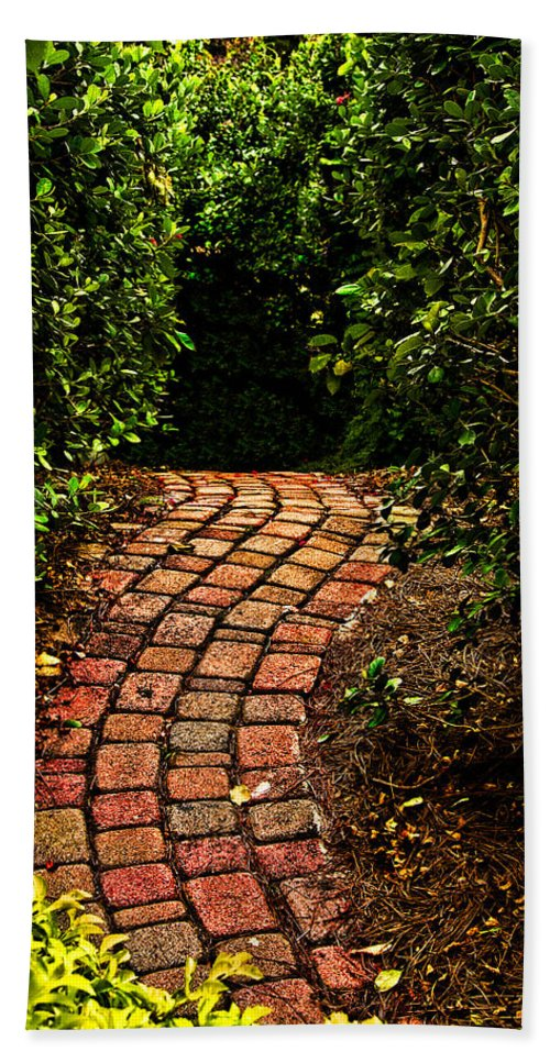 Path Hand Towel featuring the photograph The Path by Christopher Holmes