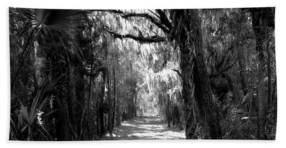 Trees Bath Sheet featuring the photograph The Road Less Traveled by J M Farris Photography