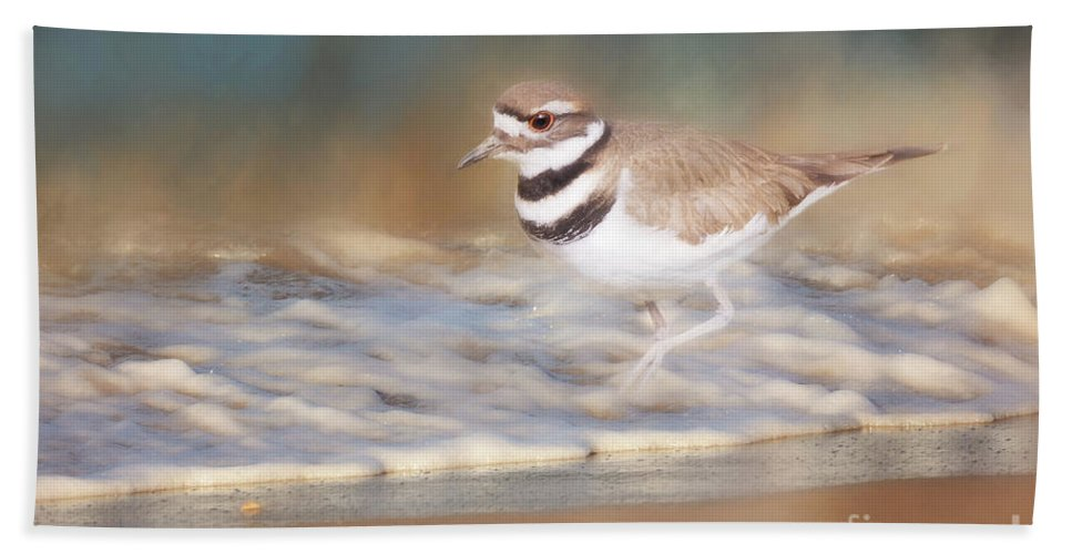 Killdeer Birds Bath Sheet featuring the photograph The Shoreline by Cindy McDonald