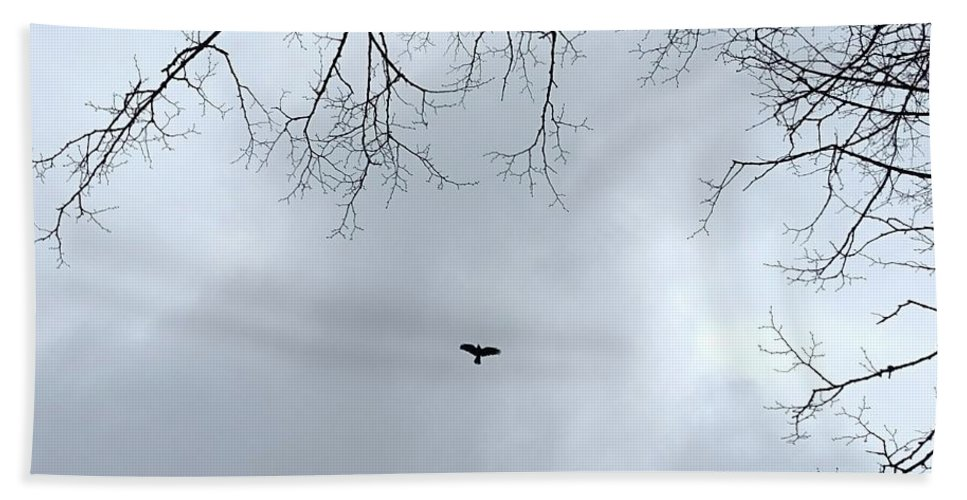 Crow. Bird. Trees. Woods. Woodland. Flying. Bath Sheet featuring the photograph The Sky Above by Nicholas Rainsford