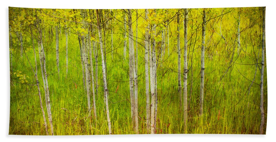 Forest Bath Sheet featuring the photograph The Small Forest by Tara Turner