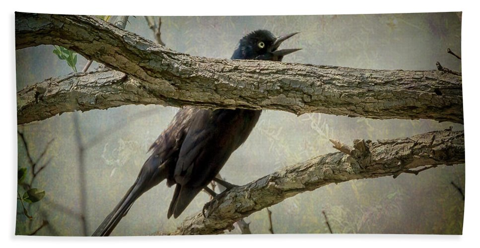 2d Bath Sheet featuring the photograph The Song Of Nature by Brian Wallace