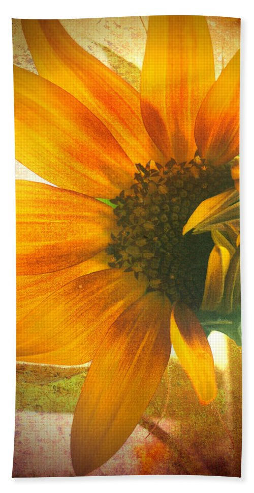 Sunflower Hand Towel featuring the photograph The Truth-teller by Tara Turner