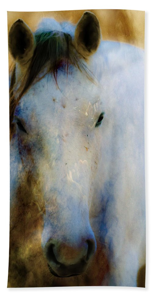 Horse Bath Sheet featuring the photograph The Water Horse by Jeanie Eaton
