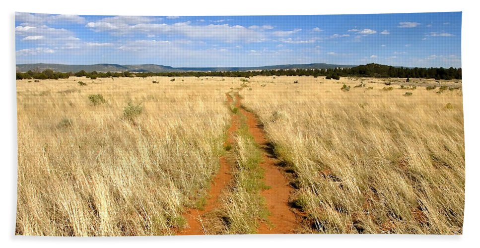 Trail Bath Sheet featuring the photograph The Westward Trail by David Lee Thompson