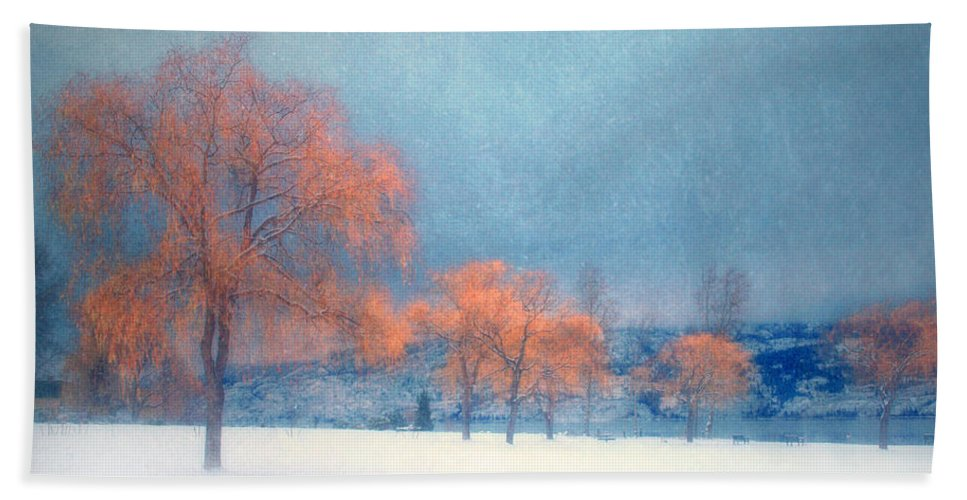 Blue Hand Towel featuring the photograph The Winter Blues by Tara Turner
