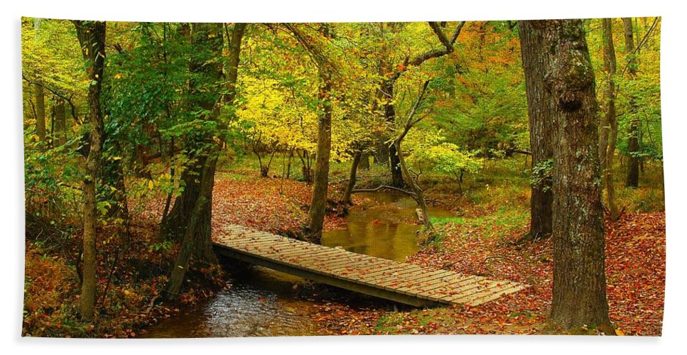 Autumn Landscapes Bath Towel featuring the photograph There Is Peace - Allaire State Park by Angie Tirado