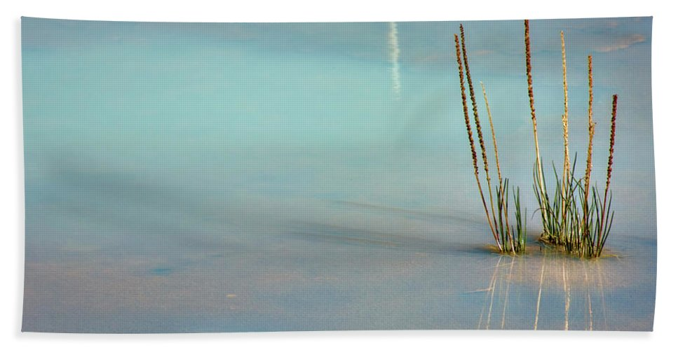 Bush Hand Towel featuring the photograph Thermal Reflection by Lana Trussell