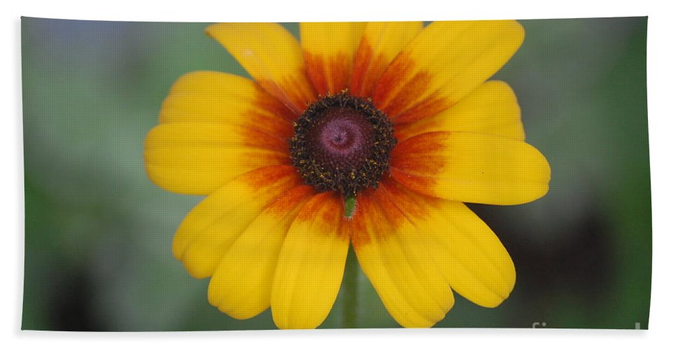 Landscape Bath Sheet featuring the photograph They Call Me Mellow Yellow. by David Lane