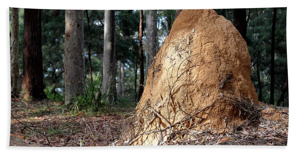 This Hand Towel featuring the photograph This Mound Has Termites by Nicholas Blackwell