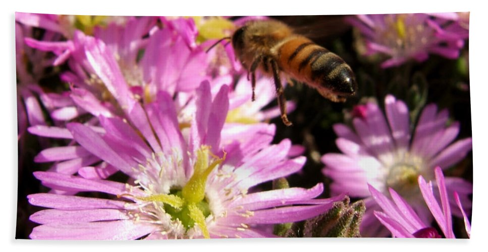 Bee Bath Sheet featuring the photograph This Will Do by Chris Brannen