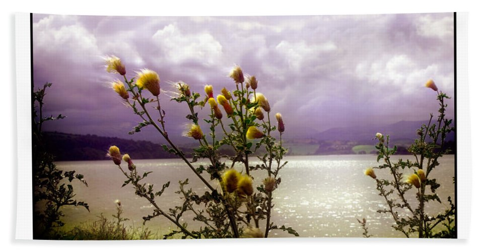 Thistle Bath Sheet featuring the photograph Thistledown Time by Mal Bray
