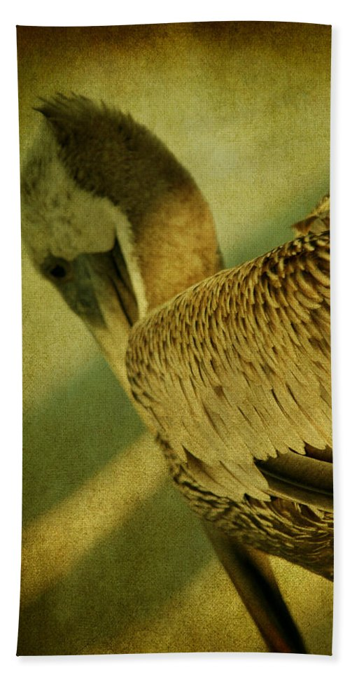 Pelican Hand Towel featuring the photograph Thoughtful Pelican by Susanne Van Hulst
