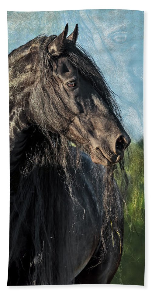 Thoughts Of Friesians Hand Towel featuring the photograph Thoughts Of Friesians by Wes and Dotty Weber