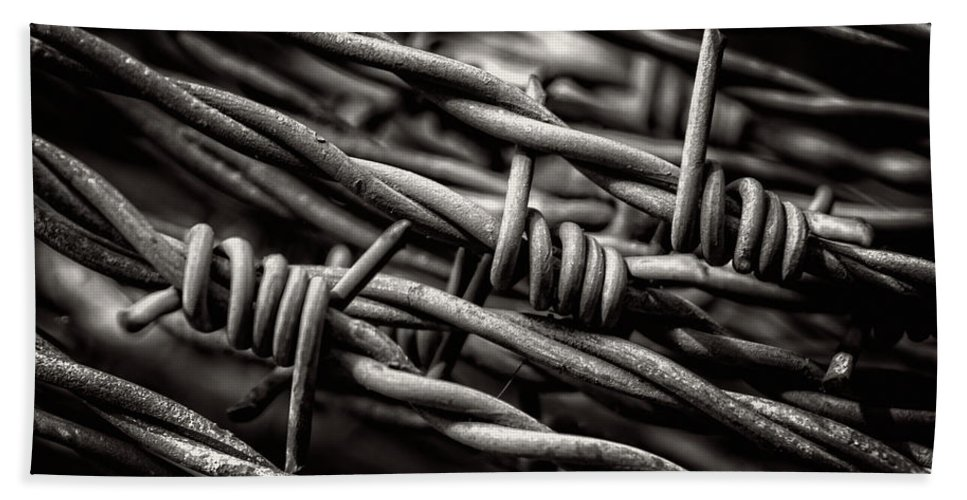 Barbed Wire Bath Sheet featuring the photograph Three Barbs In Black And White by Greg Mimbs