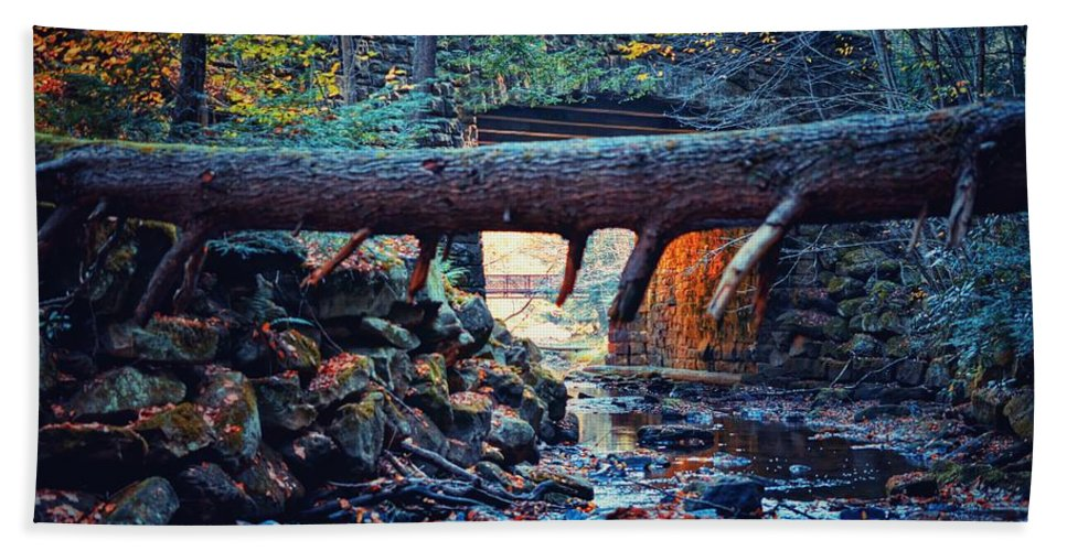 Bridge Hand Towel featuring the photograph Three Bridges by Shelley Smith